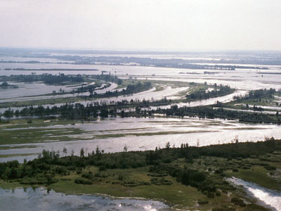 The floodplain of the Iugan Ob River
