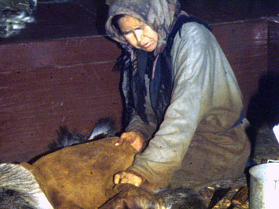 Woman Preparing Moosehide